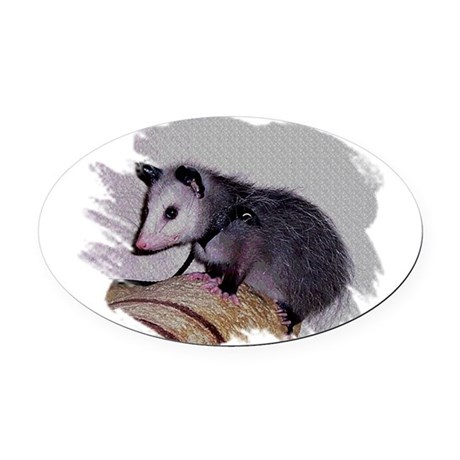 Baby Possum Oval Car Magnet
