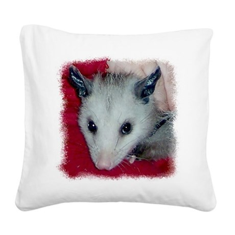 Little Possum Square Canvas Pillow