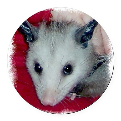 Little Possum Round Car Magnet