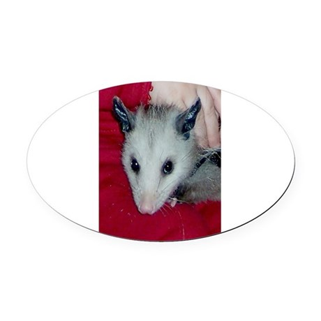 Little Possum Oval Car Magnet