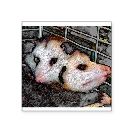 "Two Opossums Square Sticker 3"" x 3"""