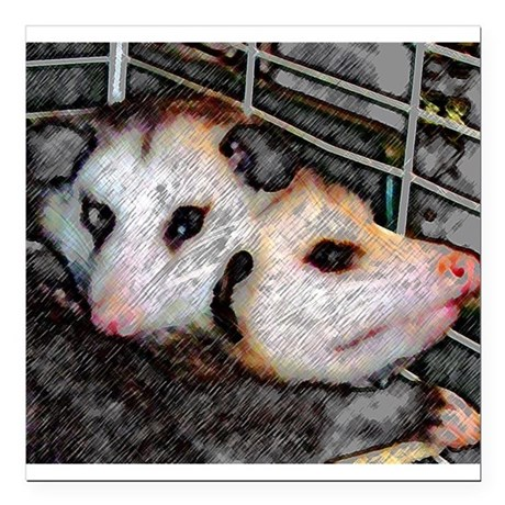 "Two Opossums Square Car Magnet 3"" x 3"""
