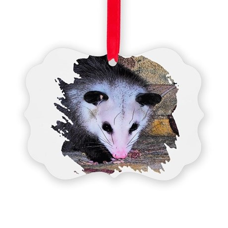 possum Picture Ornament