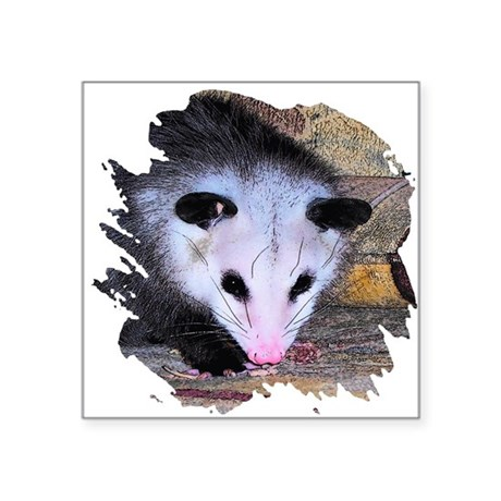 "possum Square Sticker 3"" x 3"""