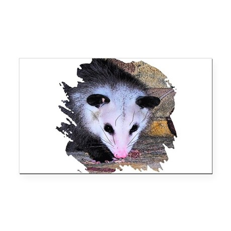 possum Rectangle Car Magnet