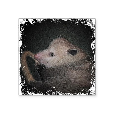 "Sleepy Possum Square Sticker 3"" x 3"""