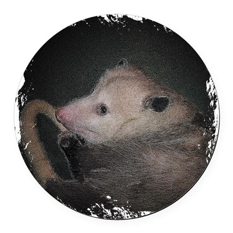 Sleepy Possum Round Car Magnet