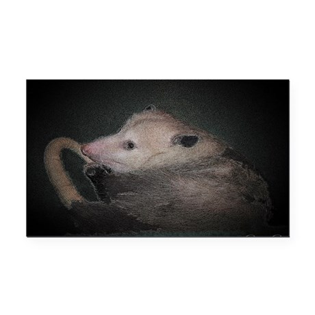 Sleepy Possum Rectangle Car Magnet