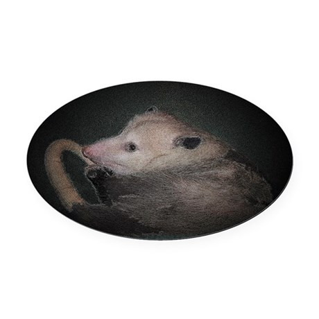 Sleepy Possum Oval Car Magnet