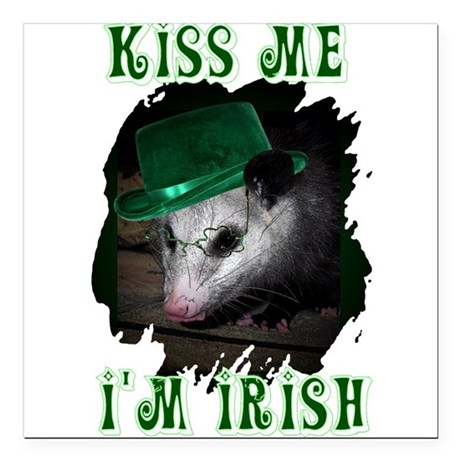 Possum Irish Square Car Magnet 3&quot; x 3&quot;