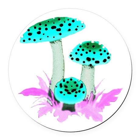 mushrooms2f.png Round Car Magnet