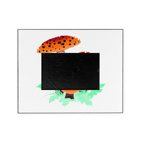 mushrooms2h.png Picture Frame