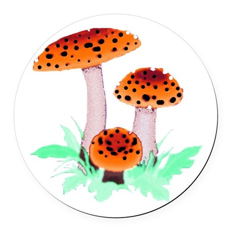 mushrooms2h.png Round Car Magnet