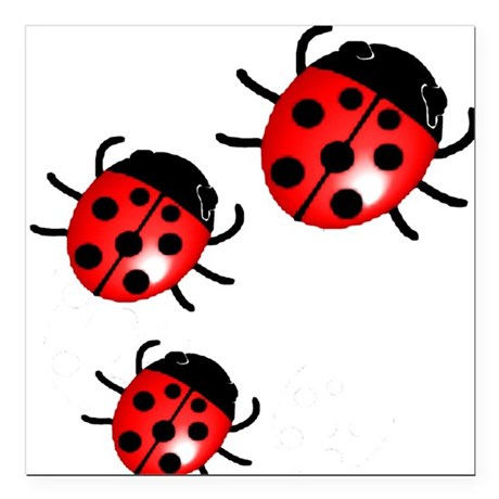 "Ladybugs Square Car Magnet 3"" x 3"""