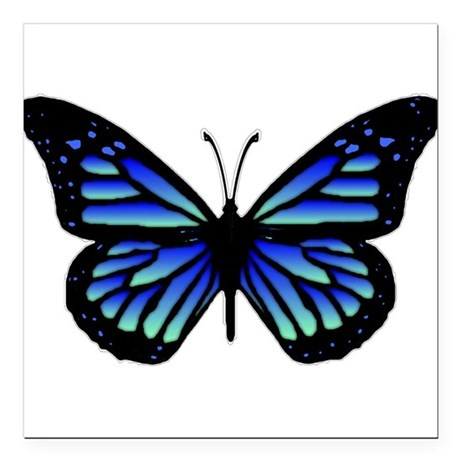 "Blue Butterfly Square Car Magnet 3"" x 3"""