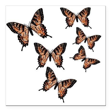 "Orange Butterflies Square Car Magnet 3"" x 3"""