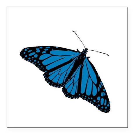 "Butterfly Square Car Magnet 3"" x 3"""