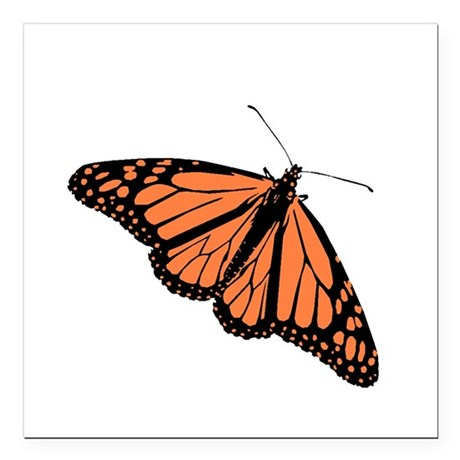 Monarch Butterfly Square Car Magnet 3&quot; x 3&quot;