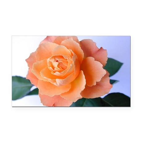 orange rose Rectangle Car Magnet
