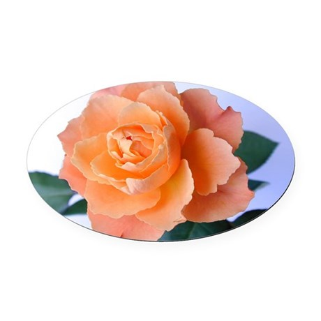 orange rose Oval Car Magnet