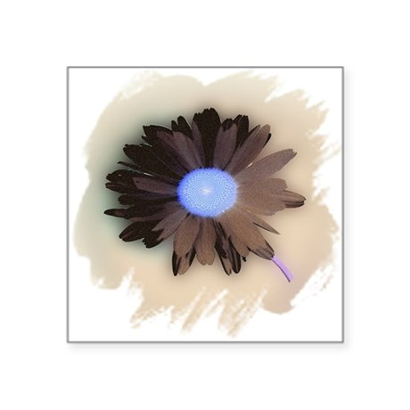 "Country Daisy Square Sticker 3"" x 3"""