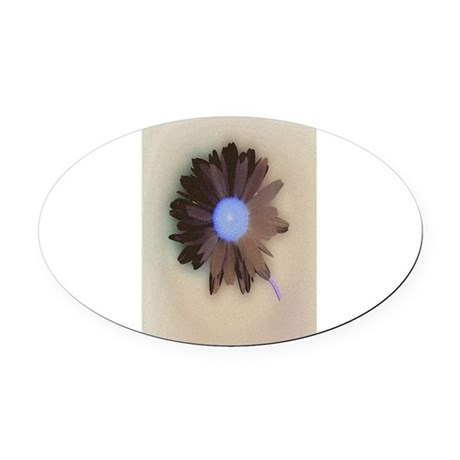 Country Daisy Oval Car Magnet