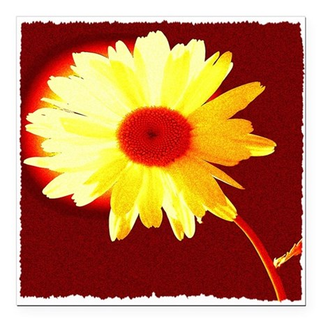 "Hot Daisy Square Car Magnet 3"" x 3"""