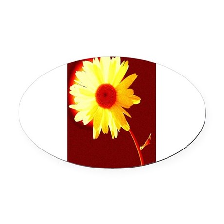 Hot Daisy Oval Car Magnet