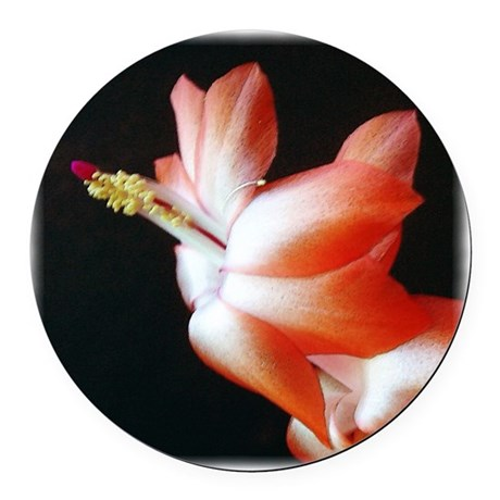 Christmas Cactus Round Car Magnet