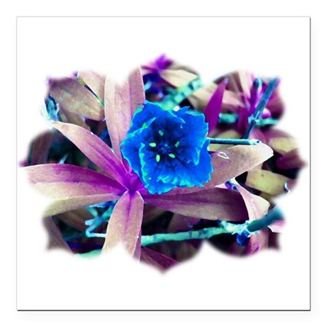 "Blue Flower Square Car Magnet 3"" x 3"""