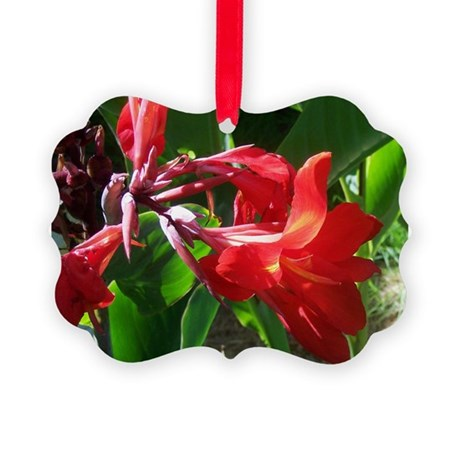 canna101.jpg Picture Ornament