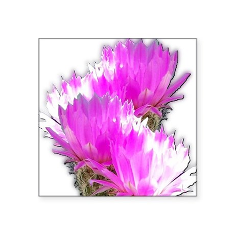 "cactus1.jpg Square Sticker 3"" x 3"""