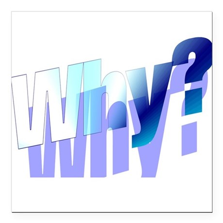 "why.png Square Car Magnet 3"" x 3"""