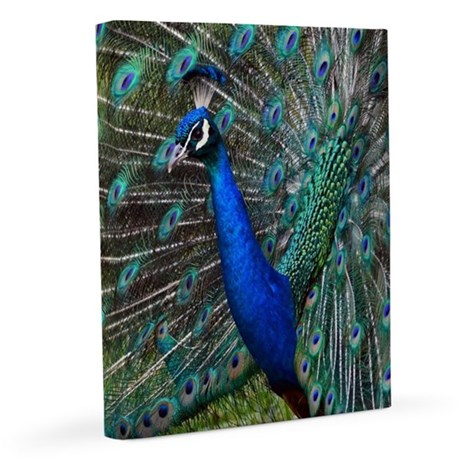 turkey2a.png iPad 3 Folio