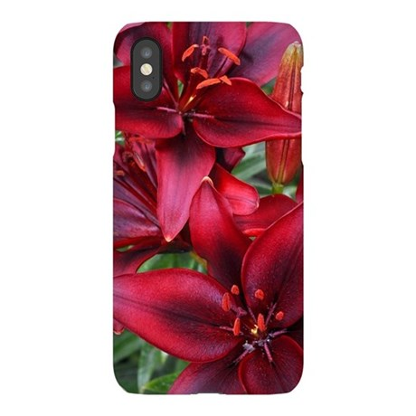 butterflies1c.jpg iPhone Wallet Case