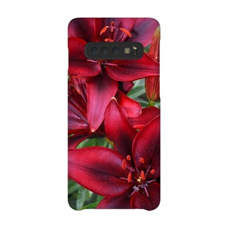 butterflies1b.jpg iPhone Wallet Case