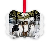 Funny Australian shepherd Picture Ornament