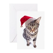 Bad Santa Cat Christmas Cards (Pk of 20)