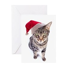 Bad Santa Cat Christmas Card