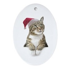Merry Bright Cat Ornament (Oval)