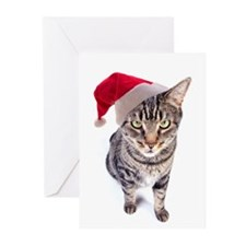 Bad Santa Cat Christmas Cards (Pk of 20)