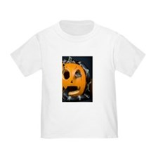 Black Snake in Pumpkin Toddler T-Shirt