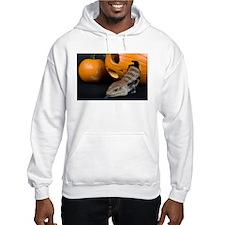 Lizard in Pumpkin Hooded Sweatshirt