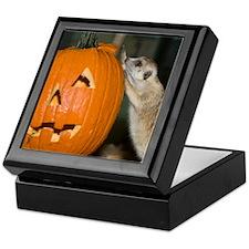 Meerkat On Pumpkin Keepsake Box
