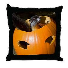 Squirrel in Pumpkin Throw Pillow
