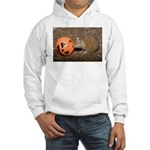 Lesser Tenrec with Pumpkin Hooded Sweatshirt