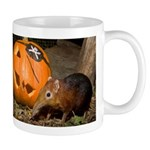 Elephant Shrew With Pumpkin Mug
