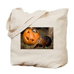 Elephant Shrew With Pumpkin Tote Bag