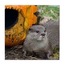 Otter With Pumpkin Tile Coaster