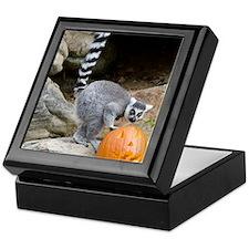 Lemur Pumpkin Keepsake Box